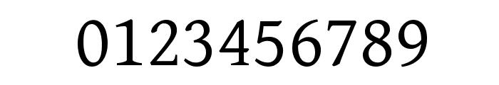 Gentium Basic Font OTHER CHARS