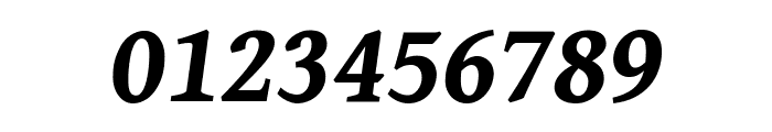 Gentium Book Basic Bold Italic Font OTHER CHARS