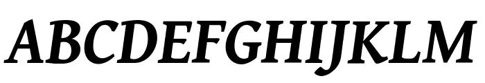 Gentium Book Basic Bold Italic Font UPPERCASE