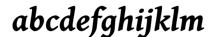 Gentium Book Basic Bold Italic Font LOWERCASE