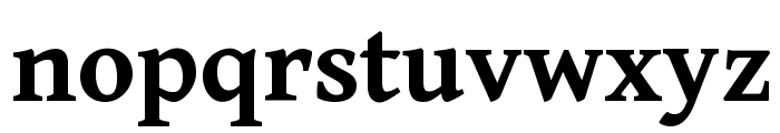 Gentium Book Basic Bold Font LOWERCASE