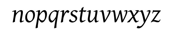Gentium Plus Italic Font LOWERCASE