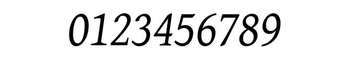 GentiumAlt Italic Font OTHER CHARS