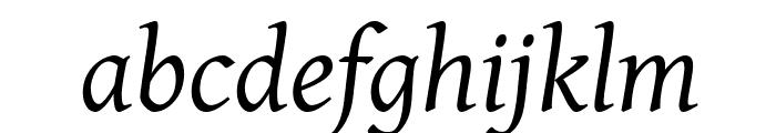 GentiumAlt Italic Font LOWERCASE