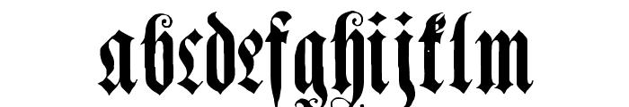 Genzsch Et Heyse Alternate Font LOWERCASE