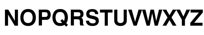 Geneva Bold Font UPPERCASE