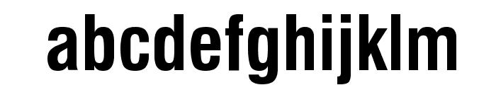 GenevaNrw Bold Font LOWERCASE