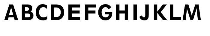 Geometric 212 Heavy Condensed Font UPPERCASE