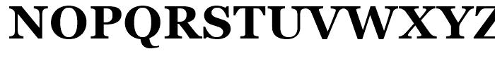 Georgia Bold Font UPPERCASE