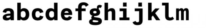 Generisch Mono Bold Font LOWERCASE