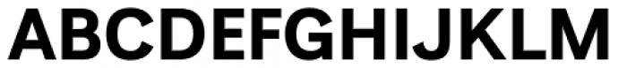 Generisch Sans Bold Font UPPERCASE