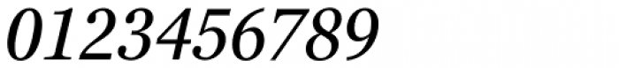 Georgia Pro Condensed Italic Font OTHER CHARS