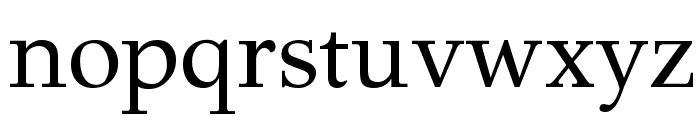 GFS Didot Regular Font LOWERCASE
