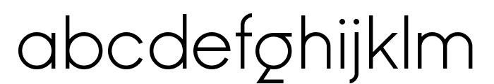 Ginora Sans Light Font LOWERCASE