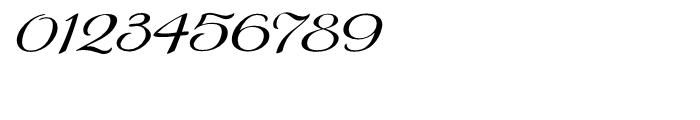 Gilda Light Italic Font OTHER CHARS