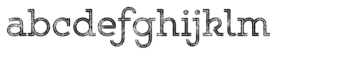 Gist Rough Upright Reg Two Font LOWERCASE