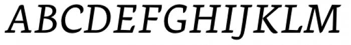 Ginkgo Pro Italic Font UPPERCASE