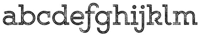 Gist Rough Upr Reg Font LOWERCASE