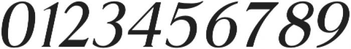 Glosso Novum Italic otf (400) Font OTHER CHARS