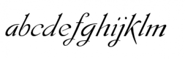 Gladly Oblique Ornate Font LOWERCASE