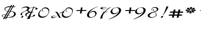 Gladly Oblique Wide Font OTHER CHARS