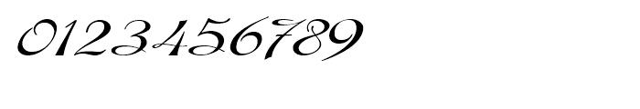 Gladly Ornate Wide Oblique Font OTHER CHARS