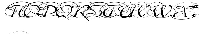 Gladly Ornate Wide Oblique Font UPPERCASE