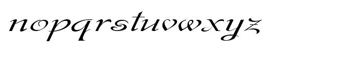 Gladly Ornate Wide Oblique Font LOWERCASE