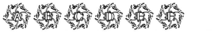 Glaciana Decorative Font UPPERCASE