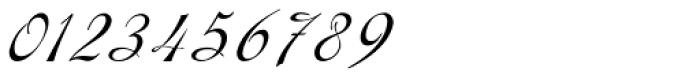 Gladly Ornate Oblique Font OTHER CHARS