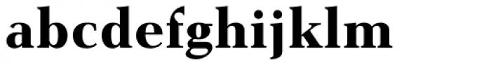 Gmuender Antiqua Pro Bold Font LOWERCASE