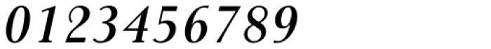 Gmuender Antiqua Pro Demi Italic Font OTHER CHARS
