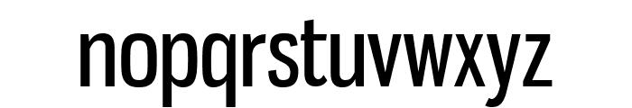 GnuolaneRg-Regular Font LOWERCASE