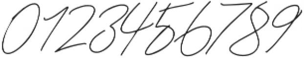 Godwit Signature Light otf (300) Font OTHER CHARS