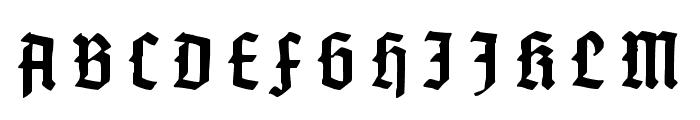 Gotenburg B UNZ_1_L Bold Italic Font UPPERCASE