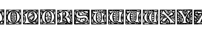 GotischeInitialen Font LOWERCASE
