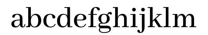 Abhaya Libre 500 Font LOWERCASE
