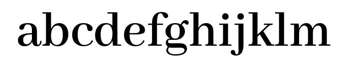 Abhaya Libre 600 Font LOWERCASE