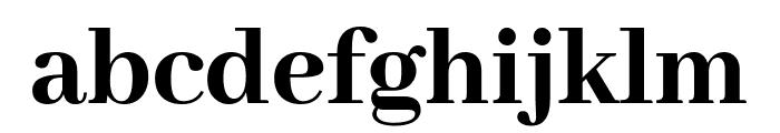 Abhaya Libre 800 Font LOWERCASE