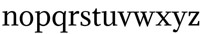 Adamina regular Font LOWERCASE