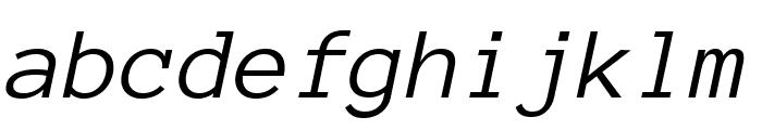 Anonymous Pro italic Font LOWERCASE