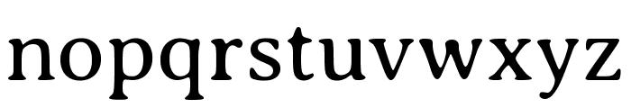 Averia Serif Libre 300 Font LOWERCASE