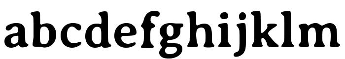 Averia Serif Libre 700 Font LOWERCASE