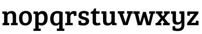 Bree Serif regular Font LOWERCASE