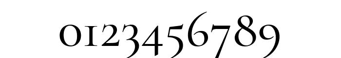 Cormorant Garamond 500 Font OTHER CHARS