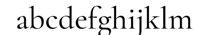 Cormorant Garamond 500 Font LOWERCASE