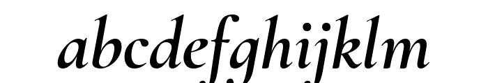 Cormorant Infant 700italic Font LOWERCASE