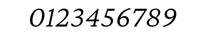 Crimson Pro 300italic Font OTHER CHARS