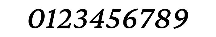 Crimson Pro 500italic Font OTHER CHARS