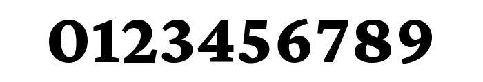 Crimson Pro 800 Font OTHER CHARS
